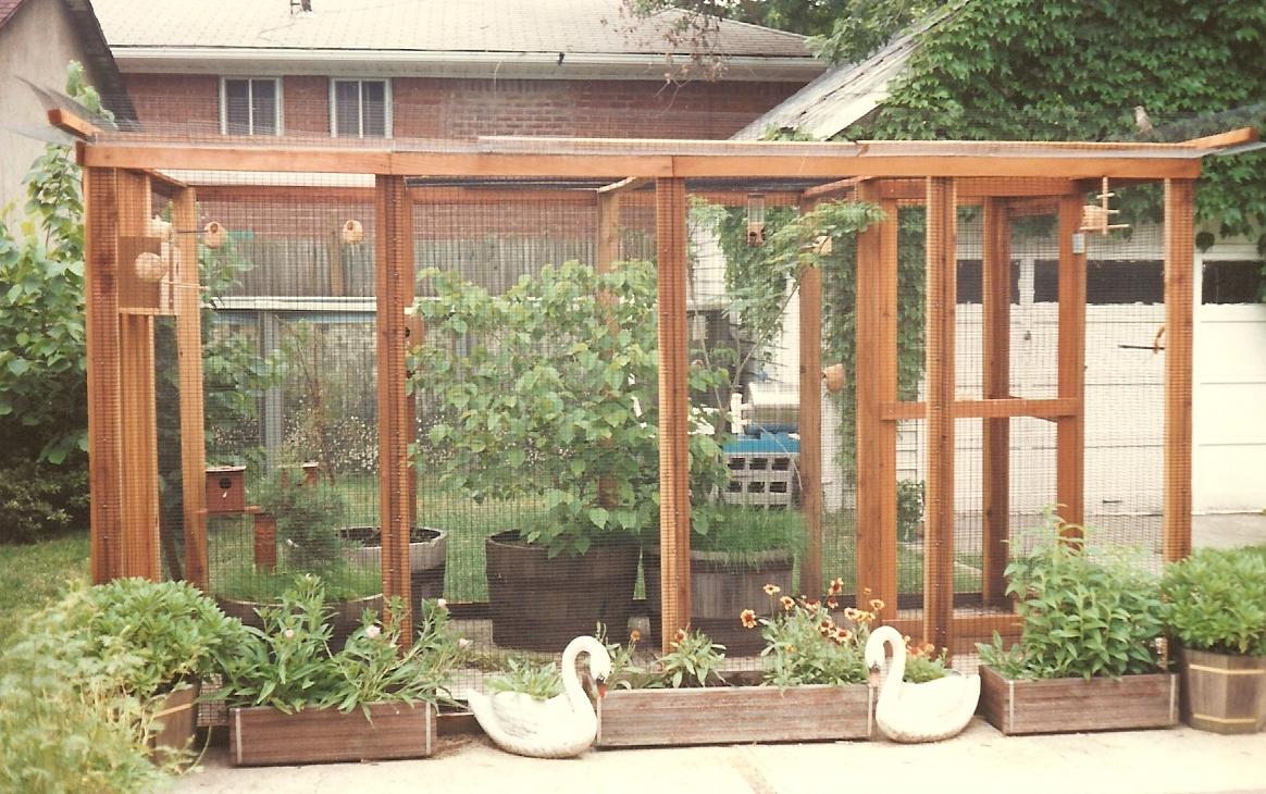 Our NY aviary